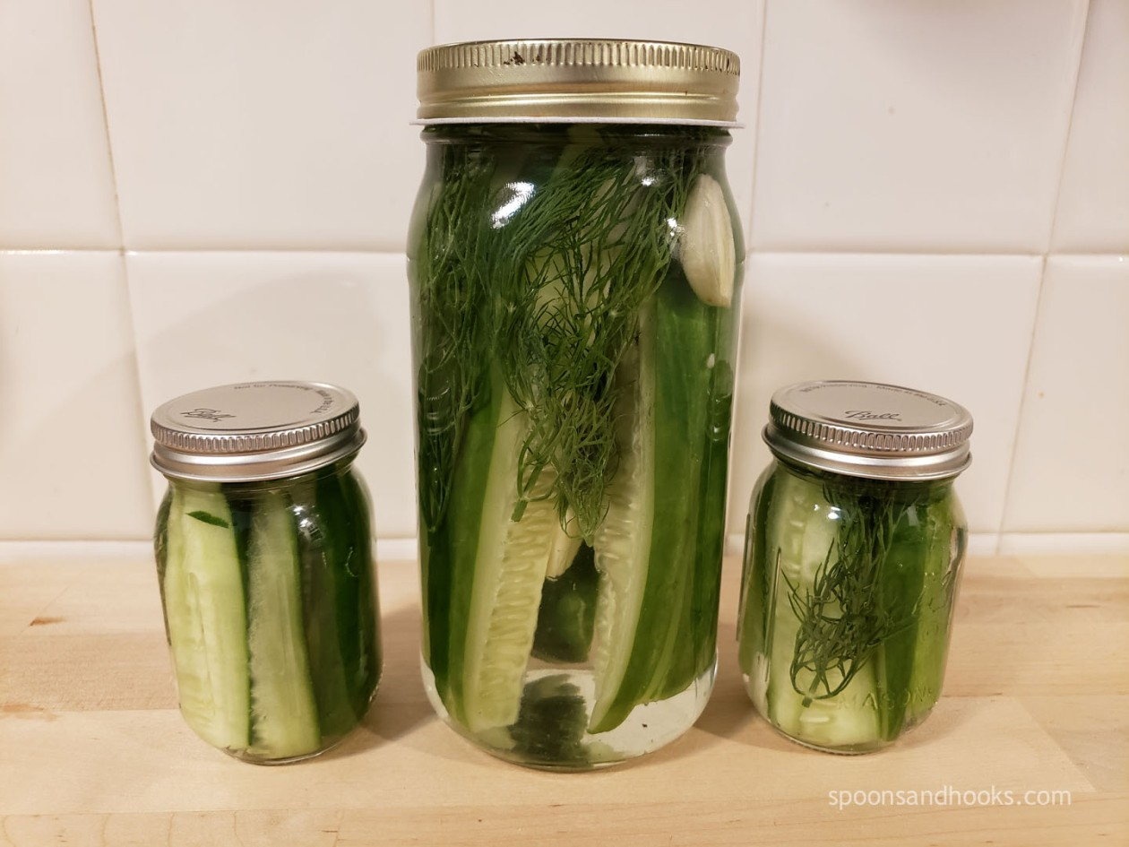 Super quick and easy recipe for refrigerator dill pickles.